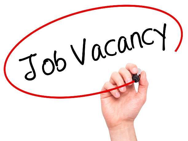 Job Vacancy For Programme Officer,Job Vacancy In IDEA Nepal,